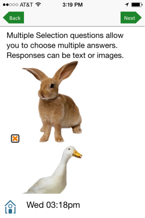 Multiple selection with image responses